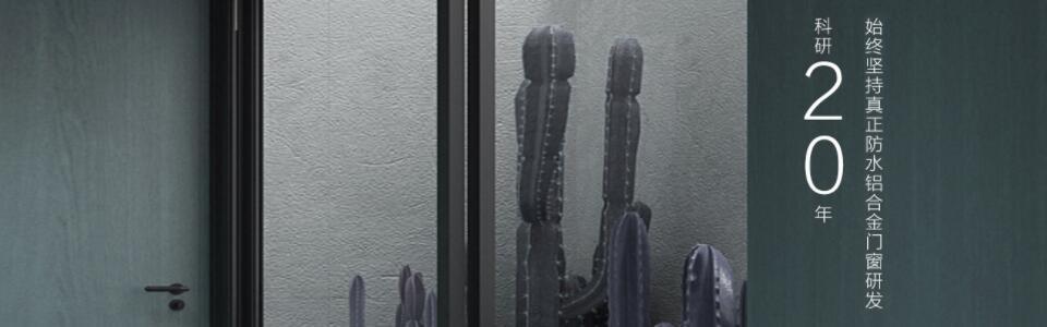 尼迪亚门窗形象图