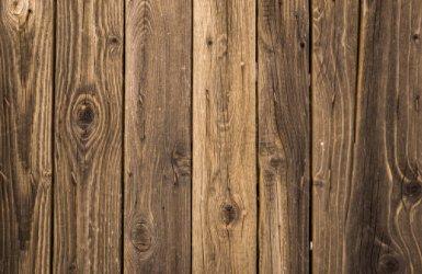 国内各大港口联手,加速木材进口