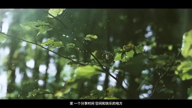 BSPH宝思派视频宣传片